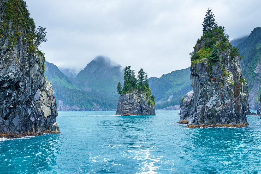 Blue Waters of Porcupine Bay on Cloudy Morning in Kenai Fjords National Park Alaska