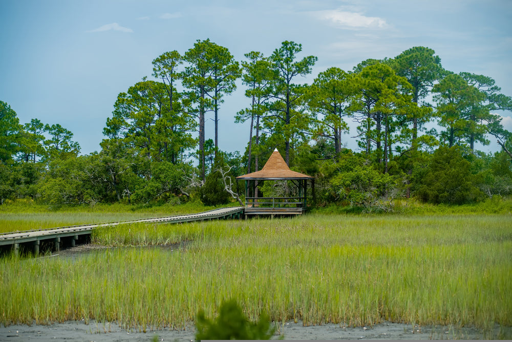 Cabana and Wooden Foot Path in Palmetto Forest in Huntington Island State Park South Carolina