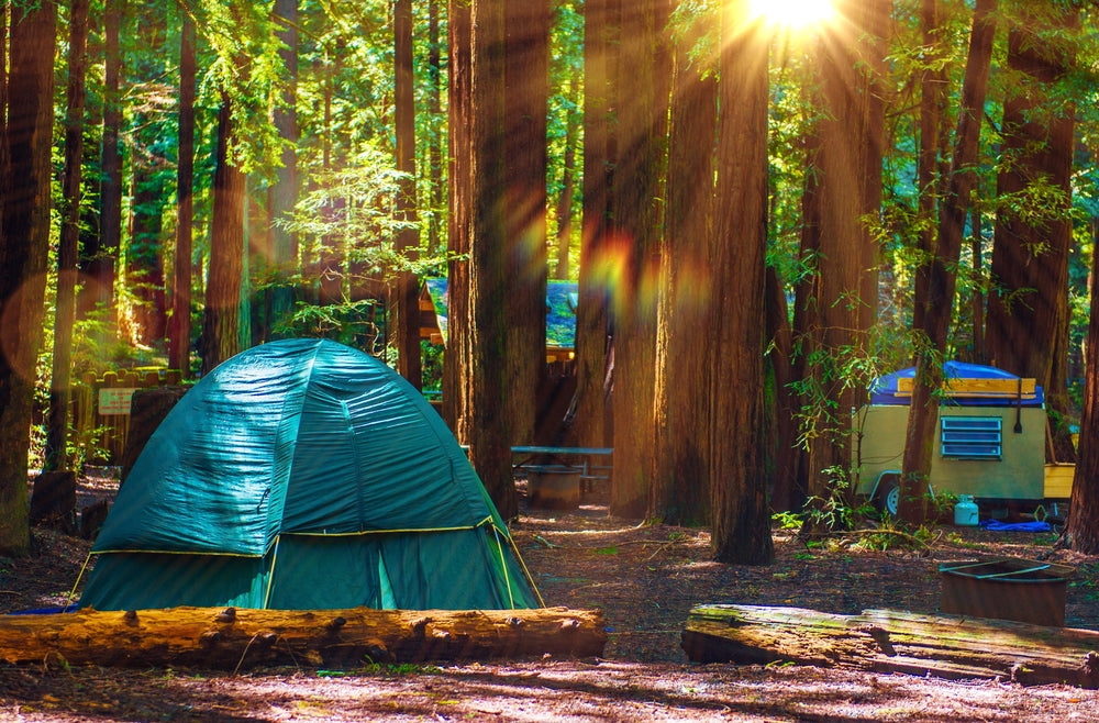 Campers at Redwood National and State Parks California
