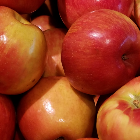 Kimmel Orchard delicious apples