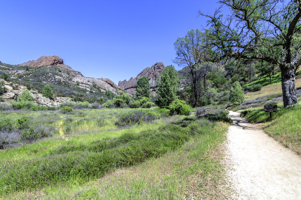 Hiking Trail Near Salinas Valley in Pinnacles National Park of Monterey County California