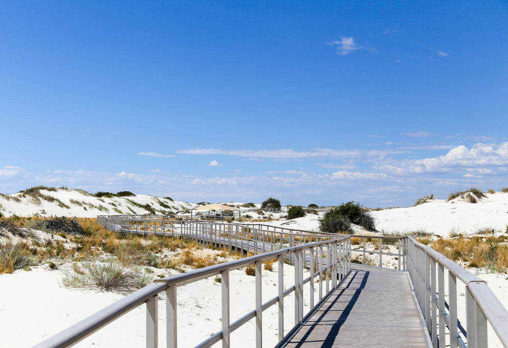 Interdune Boardwalk at White Sands National Park New Mexico