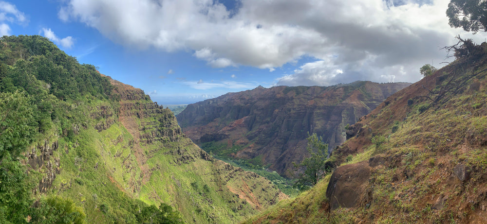 Landscape View on Sunny Day in Waimea Canyon State Park Hawaii