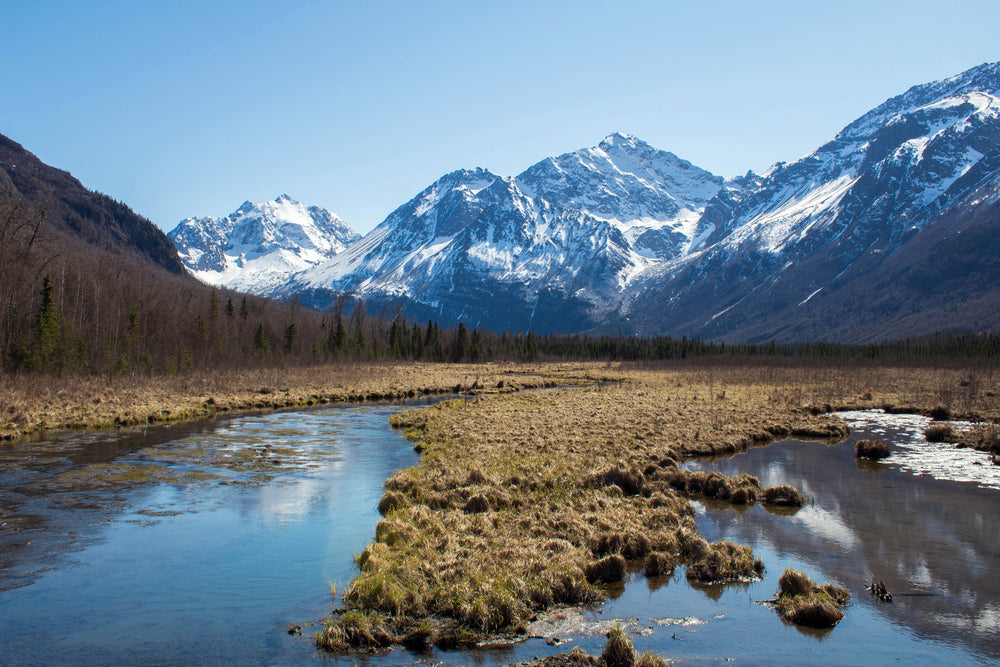 Marshes and stream leading up to Hurdygurdy Mountains in Cugach State Park Alaska