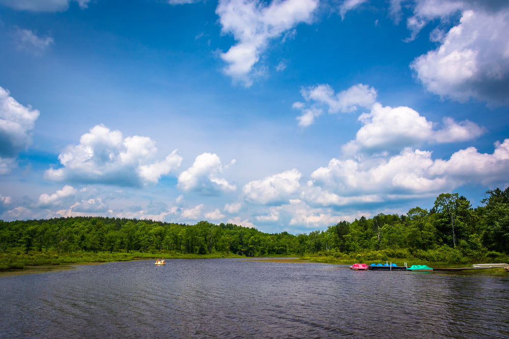 Pendleton Lake on a Sunny Day in Blackwater Falls State Park West Virginia