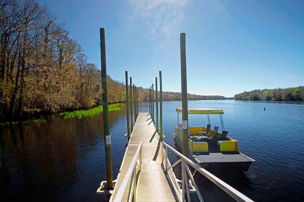 Pier on Scenic Suwannee River Manatee Springs State Park Florida