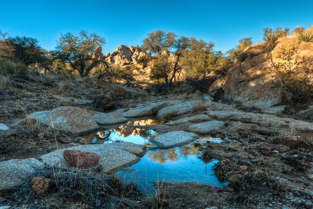 Pond With Boulders and Trees While Sun is Setting in Benson Arizona