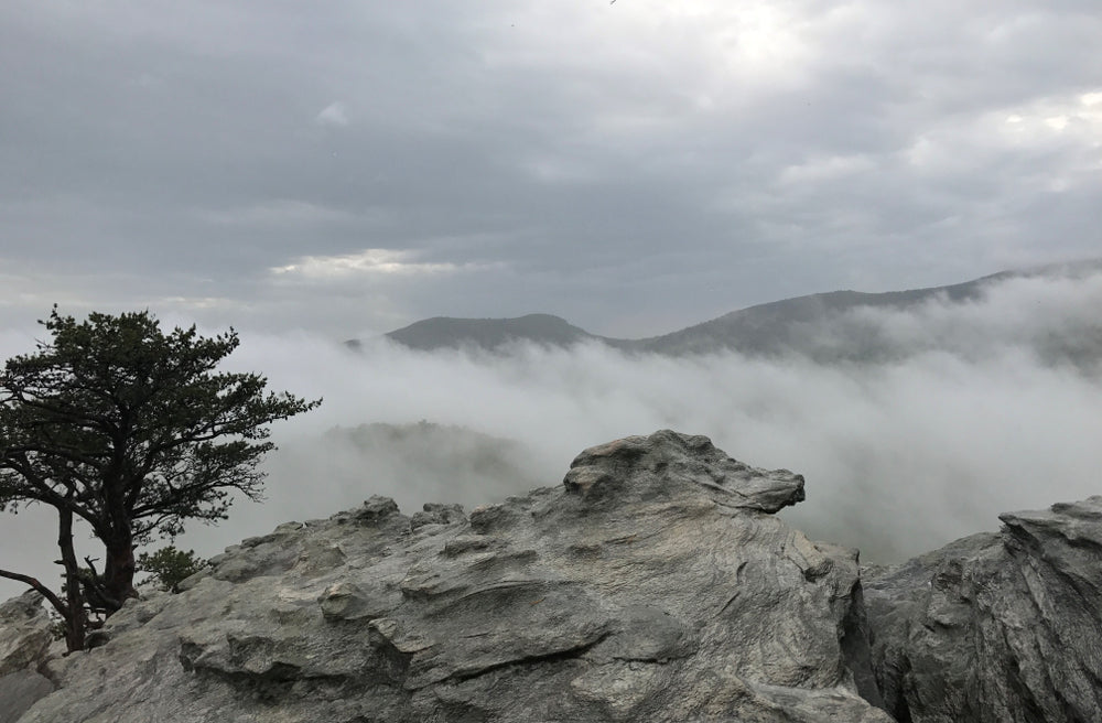 Scenic View of Mist Rolling Over Mountains Hanging Rock State Park Danbury North Carolina
