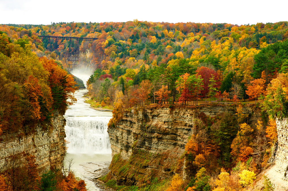 Scenic view of waterfall gorge and fall foliage forest in Letchworth State Park