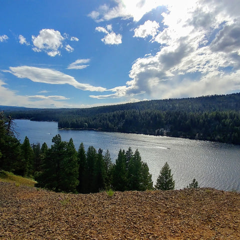scenic view from Ponderosa State Park