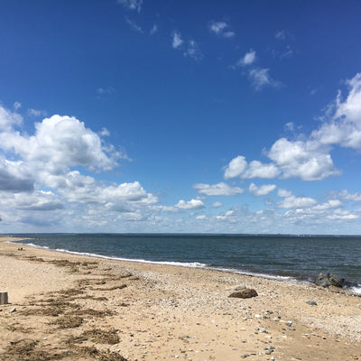 at the beach with a blue sky at Caumsett State Park