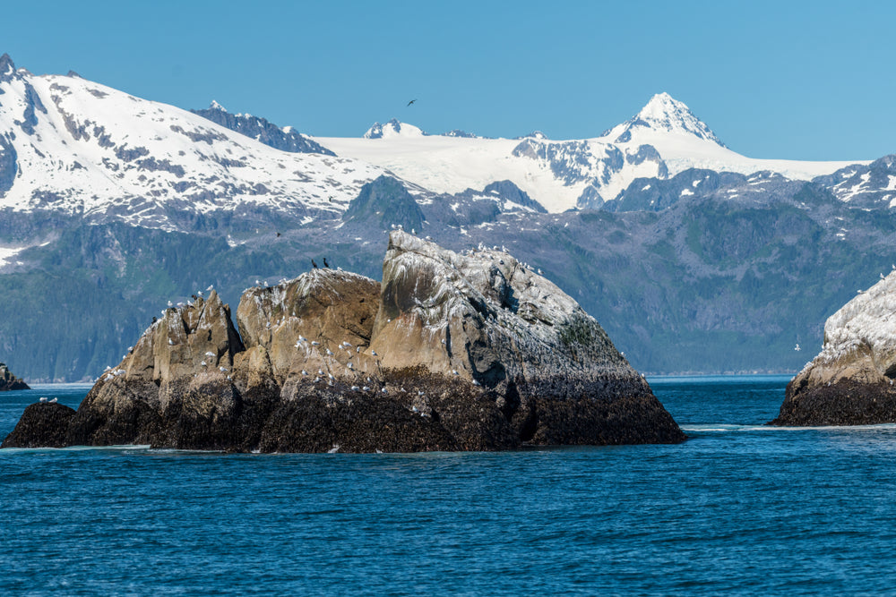 Small Rock Formations in Ocean Leading Up to Large Glaciers in Kanai Fjords National Park