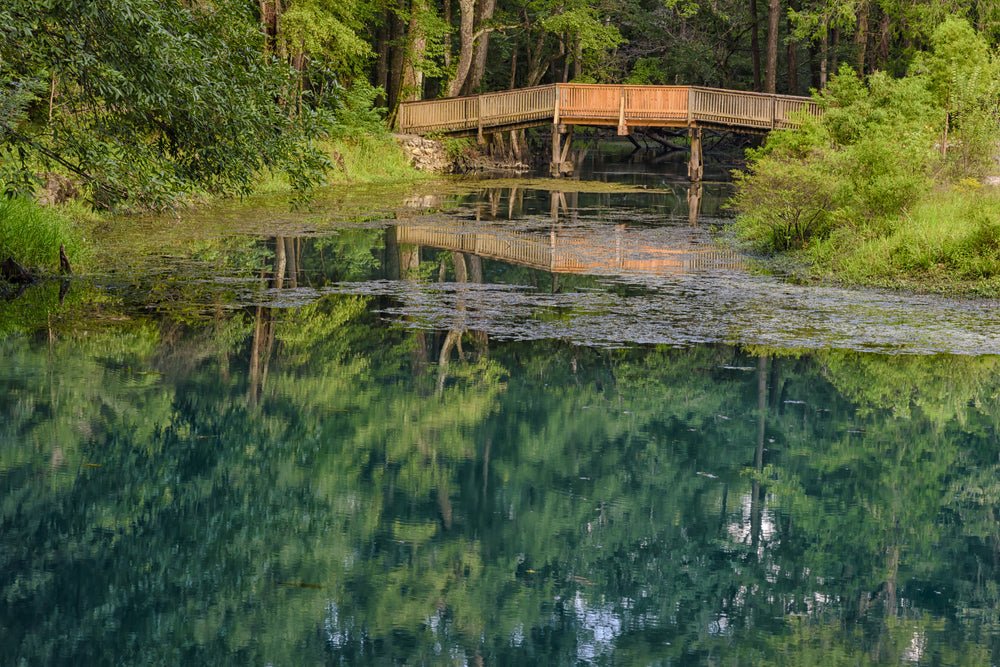 Small Wooden Bridge Over Reflecting Pond in Florida Caverns State Park Florida