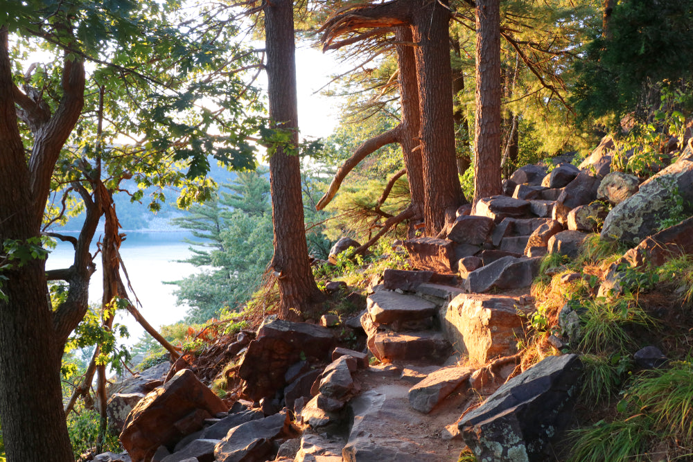 Stone Stairs Hiking Trail Shining Sunlight on Path Devils Lake State Park