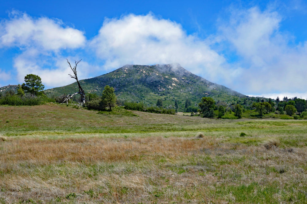 Stonewall Peak Mountain on a Sunny Day in Cuyamaca Rancho State Park California