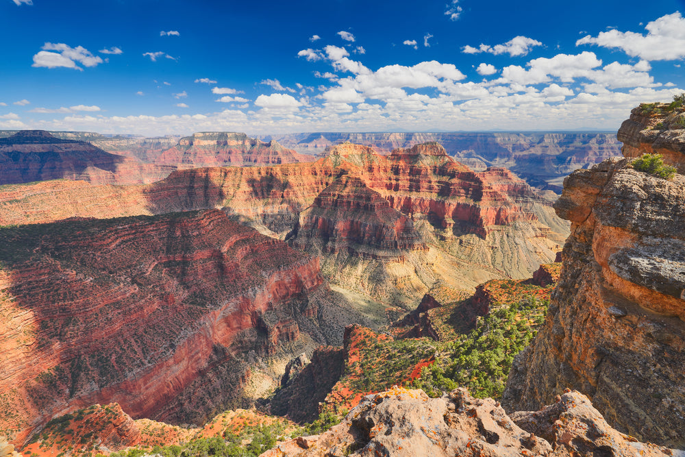 Sunny Day View of Grand Canyon Near Grand Canyon Railway RV Park