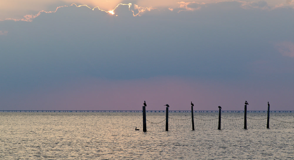 Sunset on Chesapeake Bay First Landing State Park Virginia