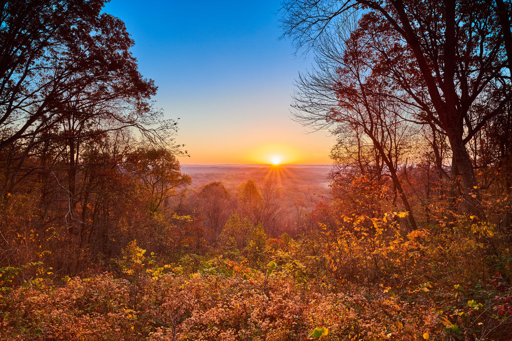 Sunset Over Autumn Leaves in Brown County State Park Indiana