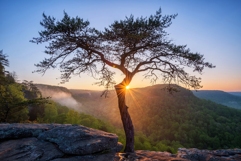 Sunset View at Buzzards Roost in Fall Creek Falls State Park