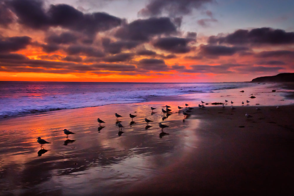 Sunset View of Pacific Ocean at Crystal Cove State Park California