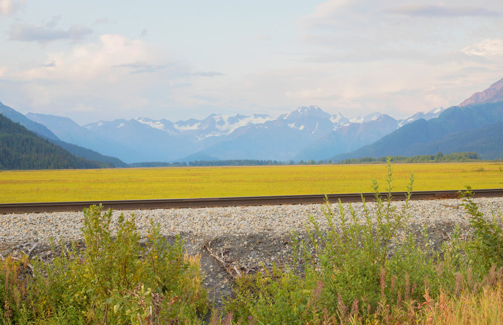 View across railroad tracks of yellow grassy field and mountains in Chugach State Park Alaska