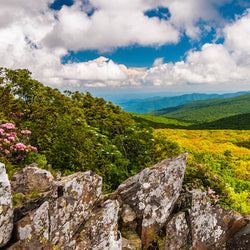 View from Stony Man Mountain in Shenandoah National Park Virginia