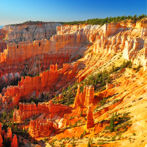 View of Bryce Canyon During the day in sunlight