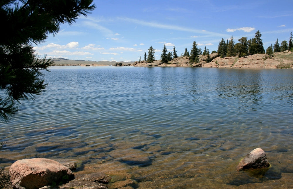 View of Lake Shore at Eleven Mile State Park Colorado