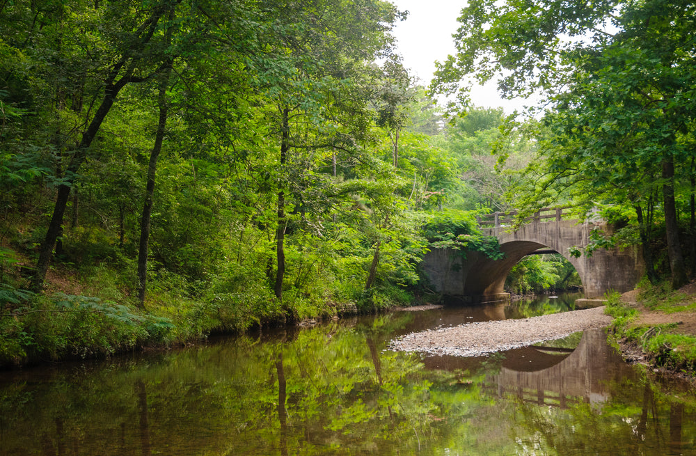 View of River Forest and Stone Bridge in Hot Springs National Park Arkansas USA