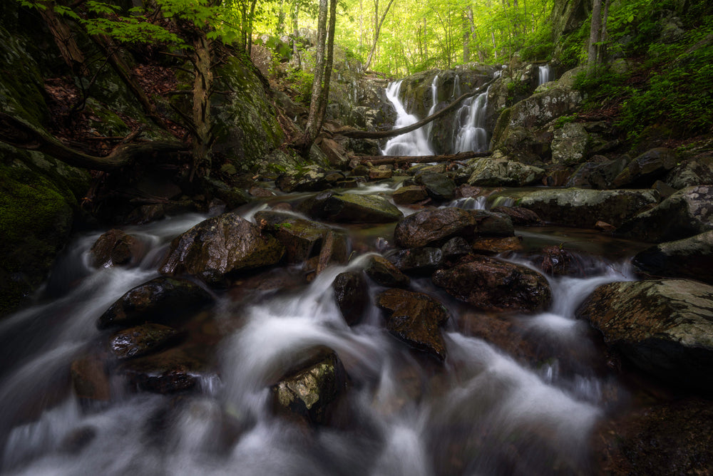 View of Spring Day Small Cascades Running Through Forest Shenandoah River State Park Virginia