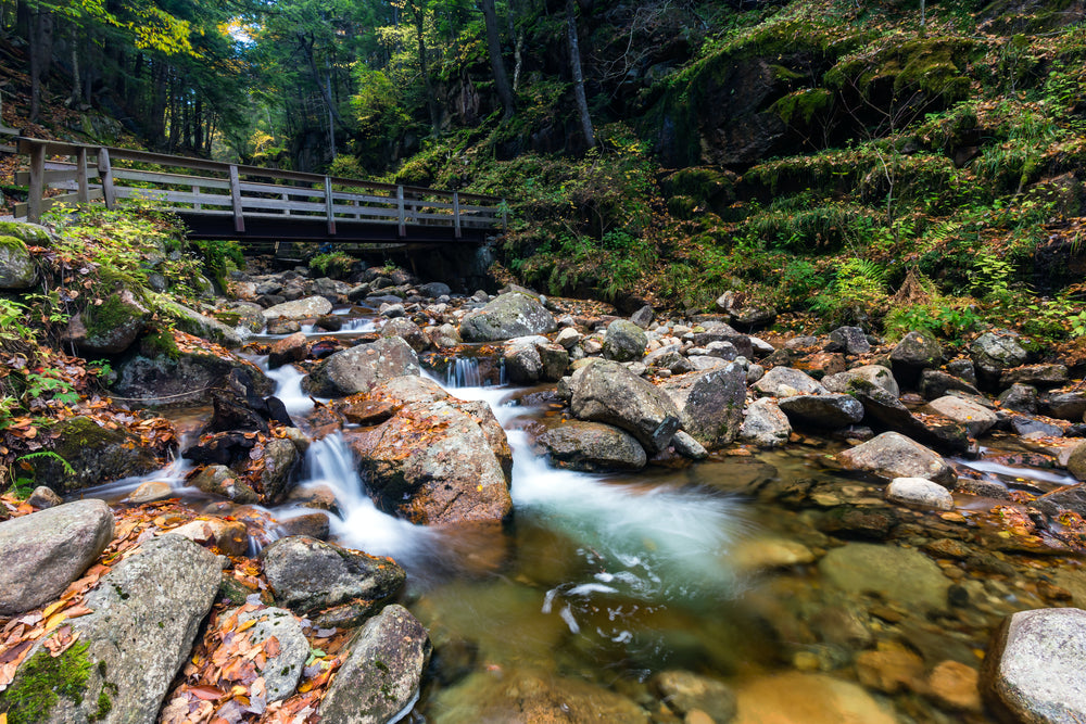 View of Stream and Falls in Franconia Notch State Park New Hampshire