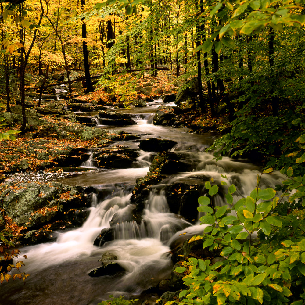 View of Stream Cascading Down Rocks in Harriman State Park New York