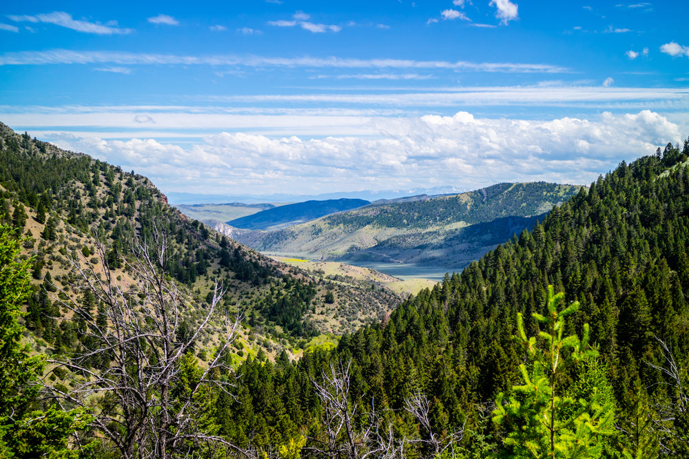 View of Sunny Day Overlooking Mountains in Lewis and Clark Caverns State Park Montana