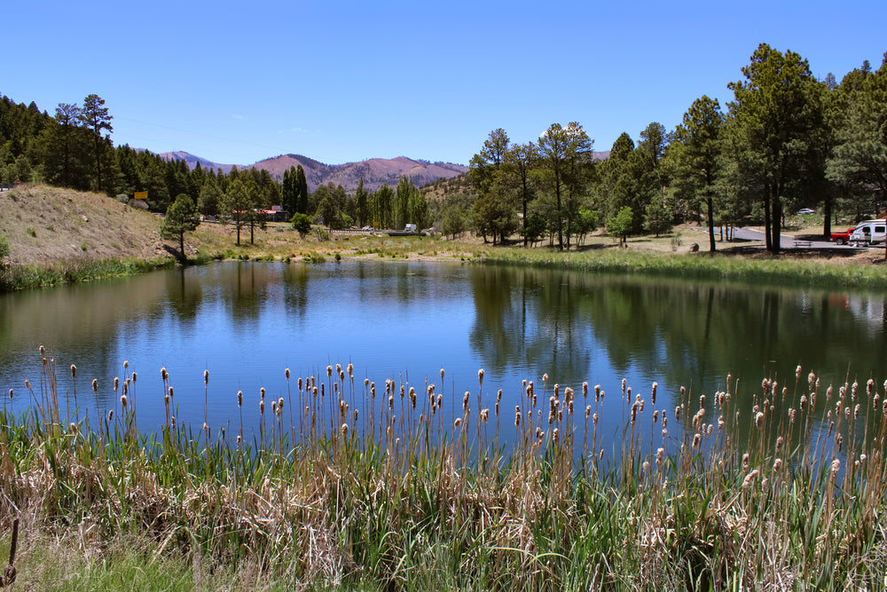 View of Sunny Lake on Alto Lake in Alto New Mexico