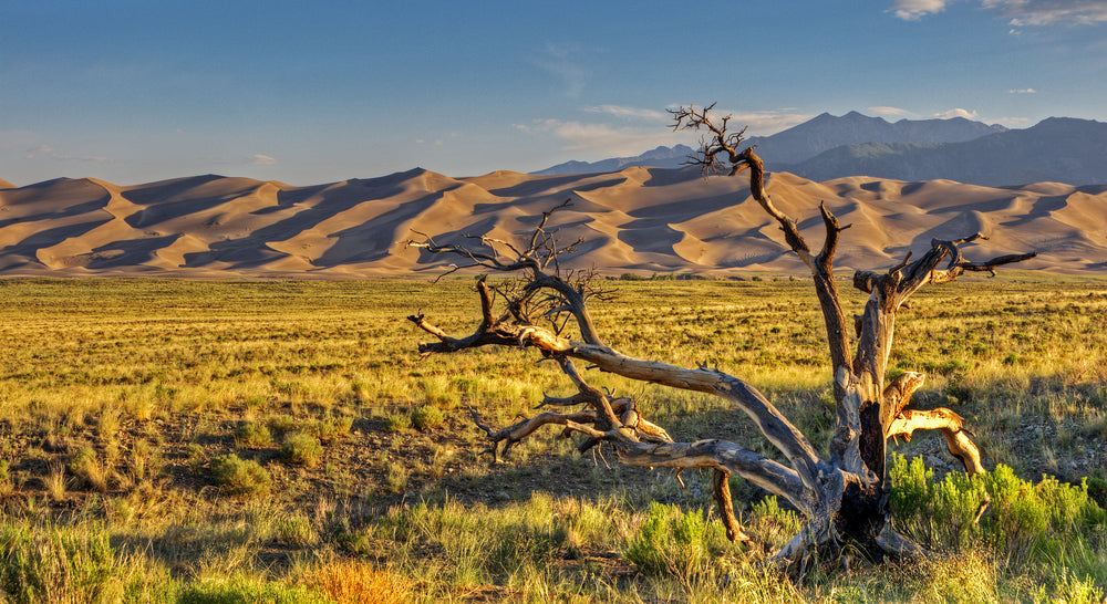 View of Sunrise at Great Sand Dunes National Park Colorado