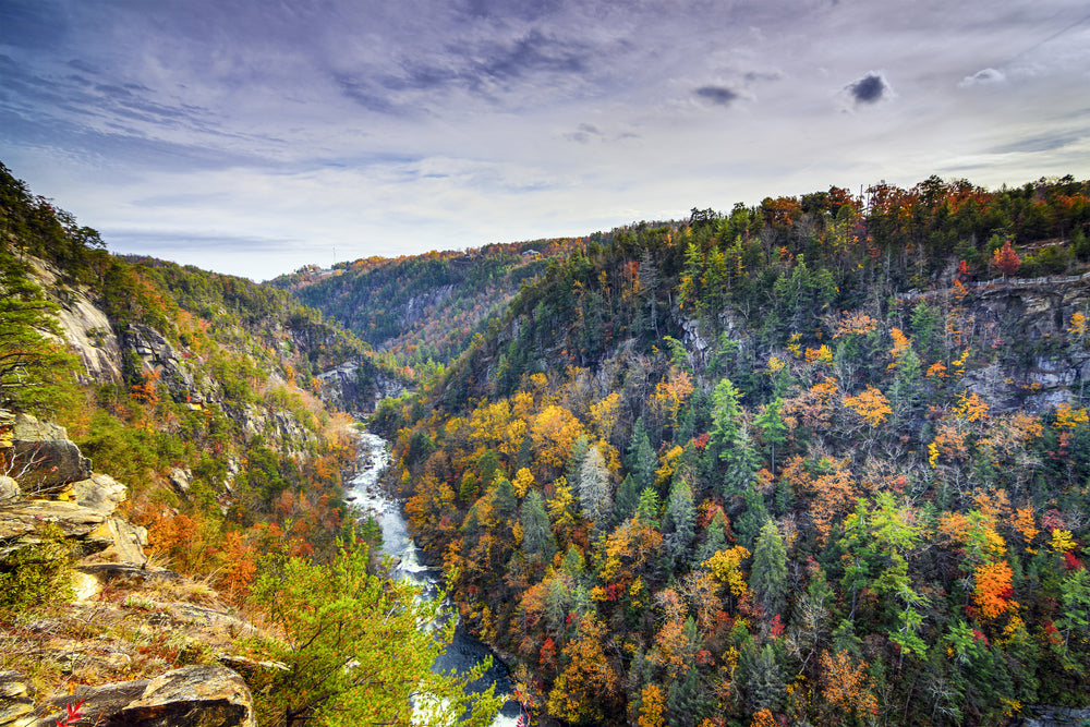 View of Tallulah Gorge State Park Georgia During Autumn