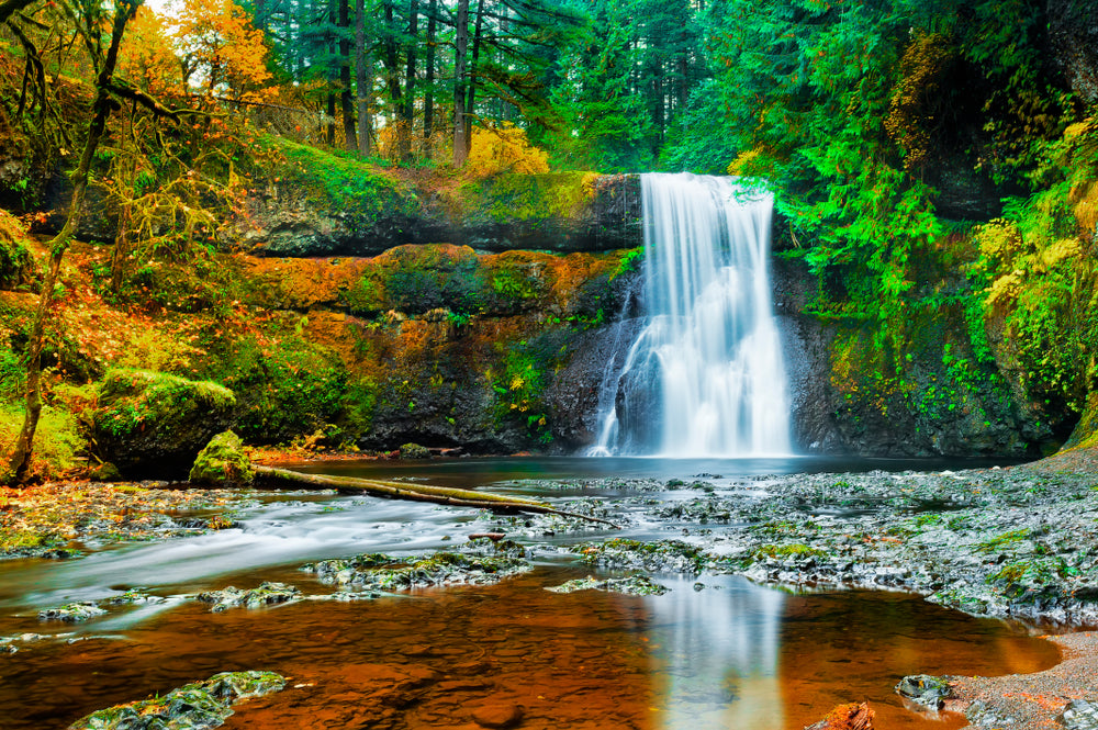 View of Upper North Falls in Silver Falls State Park Oregon