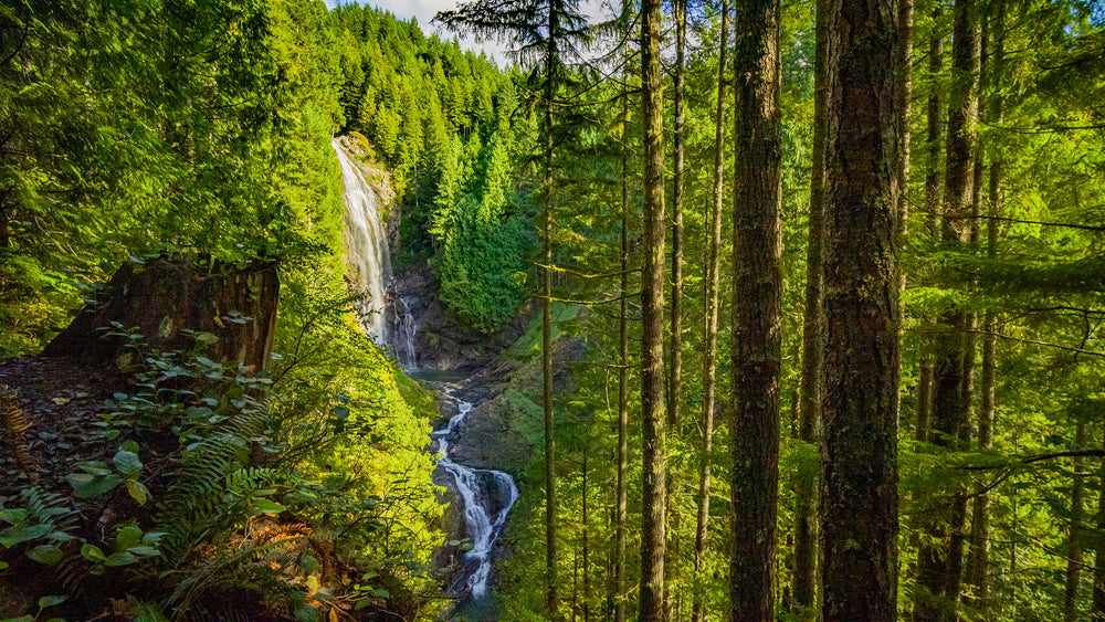 View of Waterfall on Sunny Summer Day in Wallace Falls State Park Washington