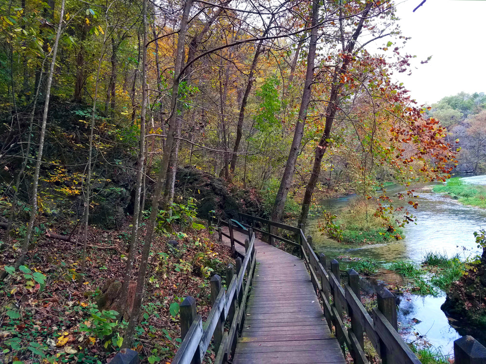 View of Wooden Trail Along River During Autumn Ha Ha Tonka State Park