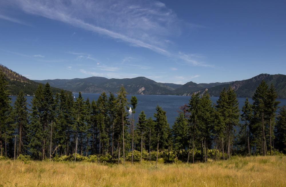 View on Sunny Day of Lake Mountains and Trees in Farragut State Park- Idaho