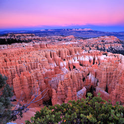 View overlooking Bryce Canyon National Park during sunset