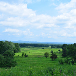 View overlooking Saratoga National Historical Park