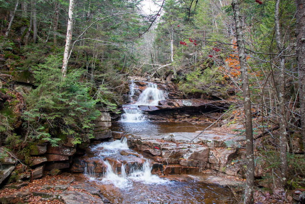 Waterfall at Crawford Notch State Park New Hampshire