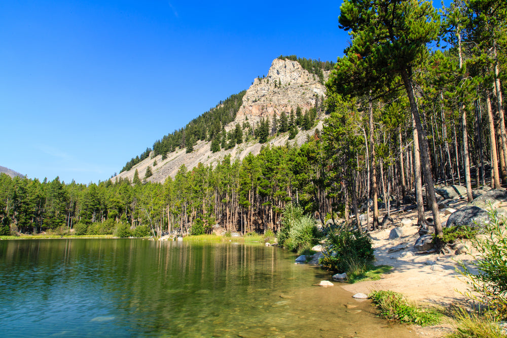 Wild Bill Lake in Custer National Forest Montana