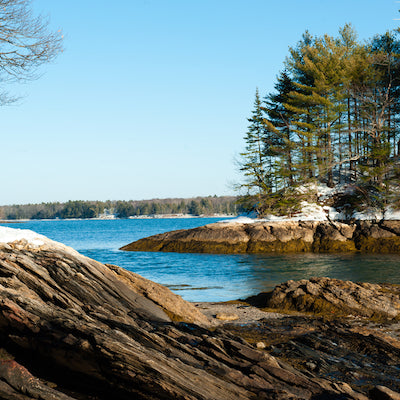Wolfe's Neck Woods State Park Maine