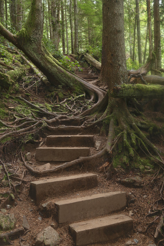 Wooden Hiking Trail to Upper Wallace Falls in Wallace Falls State Park Washington