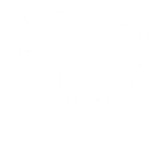 Speed Warhouse