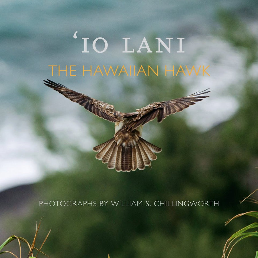 Io Lani: The Hawaiian Hawk