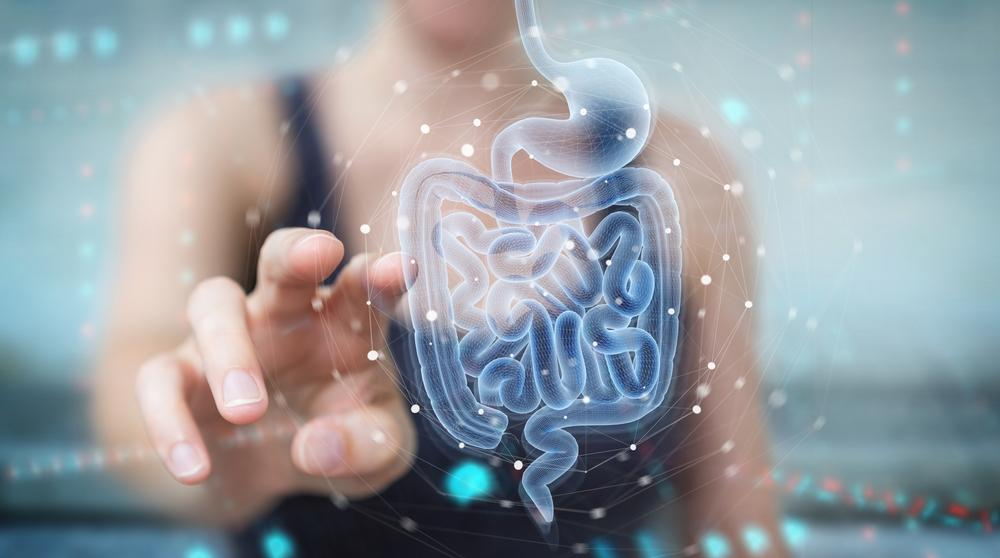 The Multiple Benefits of Probiotics