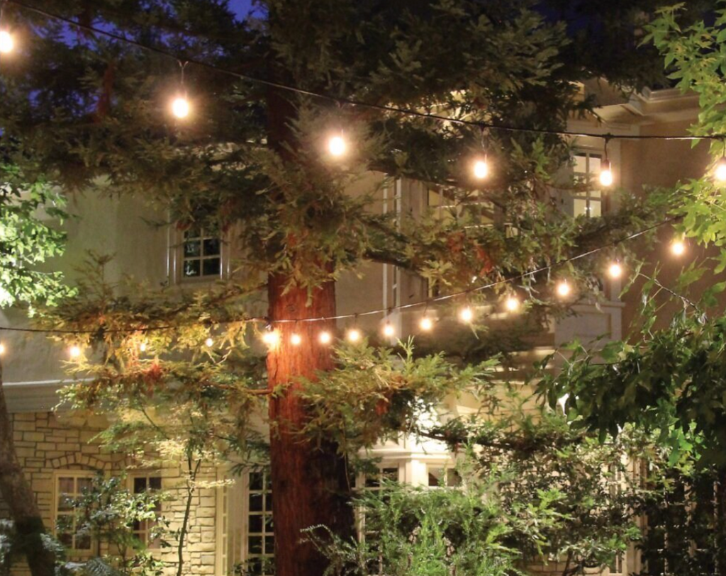 Does your Backyard need a Facelift?  Start with the Lighting!